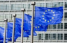 EU thành lập Văn phòng Công tố châu Âu (EPPO)