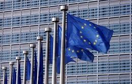 EU gia tăng trừng phạt Triều Tiên