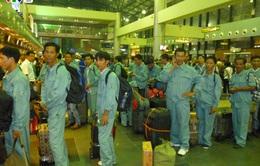 Báo động tình trạng lao động Hà Tĩnh làm việc bất hợp pháp ở Hàn Quốc