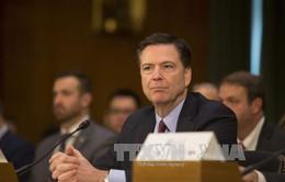 Lãnh đạo FBI bác cáo buộc nghe lén điện thoại của Tổng thống Trump