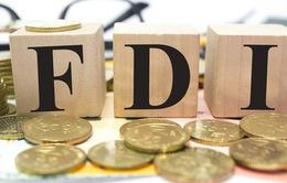 Làm thế nào để DN Việt song hành cùng dòng vốn FDI?