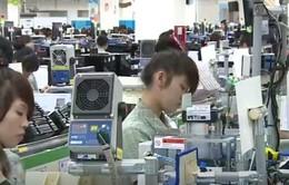Cần thúc đẩy chuyển giao kỹ thuật giữa khu vực FDI và khu vực nội địa