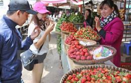 Festival Nông nghiệp - Ngư nghiệp Kiên Giang 2017: Hấp dẫn và đầy sức hút