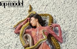 """Vietnam's Next Top Model 2017: """"Chiều chuộng"""" trăn và rắn, Cao Ngân bứt phá làm thủ lĩnh nhà chung"""