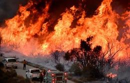 """Mỹ: """"Bão lửa"""" lan sang các vùng khác của California"""