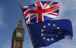 Lãnh đạo Liên minh châu Âu lo ngại về bầu cử Anh