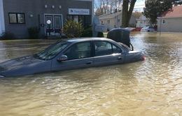 Canada: Ngập lụt nghiêm trọng do mưa lớn kéo dài