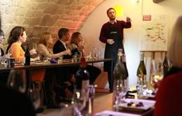 Khám phá lớp học nếm rượu vang tại Pháp