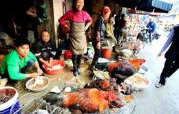 Người dân vẫn thờ ơ với dịch cúm A/H7N9