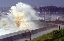 Các quốc gia vùng Caribe hứng chịu 3 trận bão mạnh liên tiếp