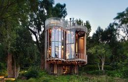 """Nhà cây ấn tượng ở Nam Phi làm du khách """"mê mệt"""""""