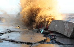 Bạc Liêu công bố lệnh khẩn cấp về thiên tai gây sạt lở kè đê biển