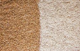 Sự thật gạo lứt hay gạo trắng tốt hơn cho sức khỏe?