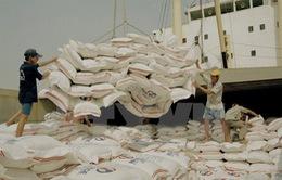 Việt Nam thuộc top 5 nước có sản lượng gạo lớn nhất thế giới