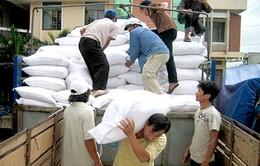 Hỗ trợ gạo cho người dân vùng bị ảnh hưởng do thiên tai
