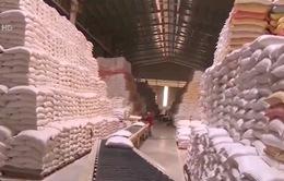 Xuất khẩu gạo Việt Nam 2017: Nhiều dấu hiệu khởi sắc
