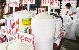 Campuchia ưu tiên sản xuất lúa chất lượng cao để xuất khẩu