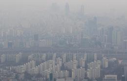 """Hàn Quốc """"tuyên chiến"""" với khói bụi"""