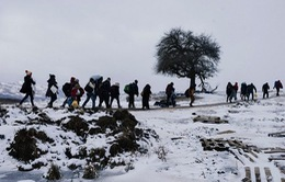 Serbia cung cấp bữa ăn miễn phí cho người nhập cư