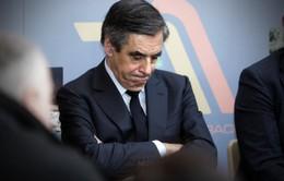 Pháp dự định cấm các nghị sĩ thuê người thân