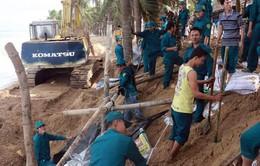 Bạc Liêu hỗ trợ khẩn cấp người dân gia cố kè biển bị sạt lở