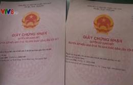 Triệt phá đường dây làm giả giấy tờ và con dấu tại Quảng Ngãi