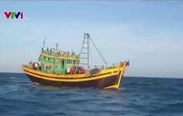 Truy bắt các đối tượng đánh bắt hải sản trái phép trên biển