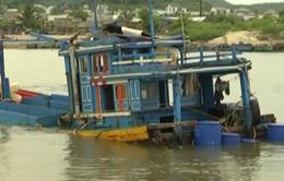 Nhức nhối nạn giã cào trên biển Bình Thuận