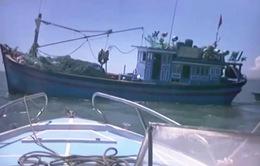 Bình Thuận: Giã cào lại tấn công người thi hành công vụ