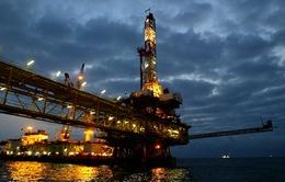 Thị trường dầu biến động sau tuyên bố cắt đứt quan hệ ngoại giao với Qatar