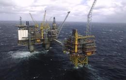 Giá dầu chứng kiến chuỗi lao dốc dài nhất trong gần 2 năm