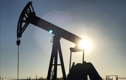Giá dầu thế giới đi xuống do lo ngại OPEC tăng khai thác