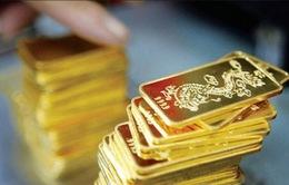 Giá vàng trong nước giảm nhanh
