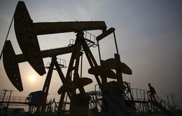 Cạnh tranh giá xăng dầu - Chuyện lạ ở Trung Quốc