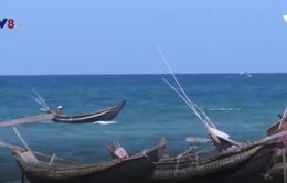 Ngư dân gặp khó vì tàu giã cào hoành hành