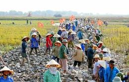 Nghệ An: 31 xã giảm gần 100 tỷ đồng nợ đọng nông thôn mới