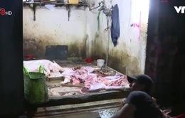Khánh Hòa sẽ xây khu giết mổ tập trung 4ha để tiết kiệm kinh phí