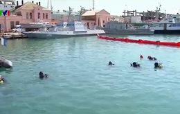 Tập trận hải quân đa quốc gia trên Biển Đen