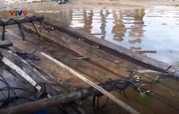 Bị kiểm tra vận chuyển gỗ lậu, chủ ghe nhảy sông trốn thoát