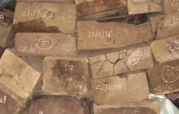 Kon Tum: Phát hiện 27 hộp gỗ xẻ vô chủ