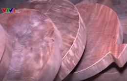 Bắc Kạn: Nhiều cây gỗ nghiến cổ thụ bị cưa bán dưới dạng thớt