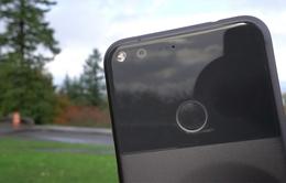 Pixel thế hệ tiếp theo có camera tốt hơn và chip xử lý mới