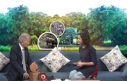 Gặp người Việt Nam đầu tiên được vinh danh Anh hùng đa dạng sinh học ASEAN