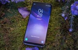 """Samsung ra mắt sớm Note 8 để """"cứu"""" Galaxy S7"""