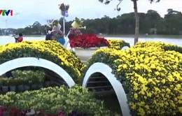 Những không gian hoa độc đáo tại Festival hoa Đà Lạt