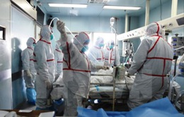 Trung Quốc phát hiện ca nhiễm virus H7N9 tại vùng giáp Việt Nam