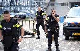 Hà Lan hủy buổi biểu diễn nhạc rock vì đe dọa khủng bố