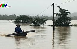 Hà Tĩnh: 6 xã bị cô lập diện rộng do nước lũ dâng cao