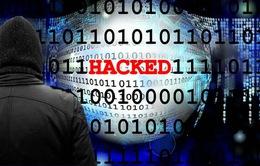 Europol: Cuộc tấn công bằng mã độc WannaCry có thể chưa dừng lại
