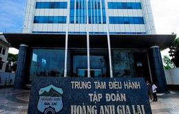 Công ty CP Hoàng Anh Gia Lai đạt doanh thu 6.440 tỷ đồng năm 2016